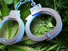 weed-handcuffs
